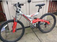 """Mountain bikes x 2 (24"""")"""