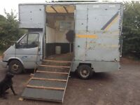 3.5t ford transit horsebox