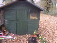 6ftx6ftapex veranda shed
