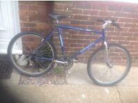 Adults Townsend Mountain bike 18 sp
