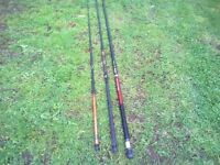 selection of fishing poles