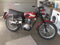 1968 Triumph Trophy (BSA Barracuda)