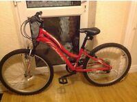 "Girls Reebok mountain bike 24"" wheels"