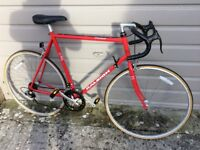 Raleigh Pursuit Fast Road Bike 12speed Shimano SIS Index Gears Large60cm Lightweight Hitensile Steel