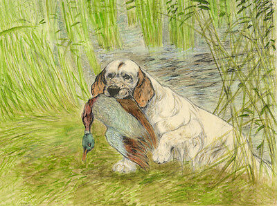 CLUMBER SPANIEL CHARMING DOG GREETINGS NOTE CARD DOG RETRIEVES DUCK FROM WATER