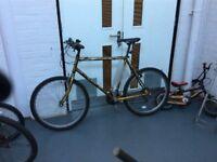 Men's Emmalle Classic 300 Mountain Bike.