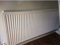 Double convector radiator
