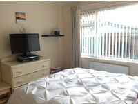 Room to let in Oakdale Poole