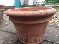 Sturdy Large Terracotta plant pot