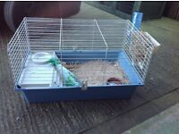 Guinea pig cage with accessories , possible free delivery