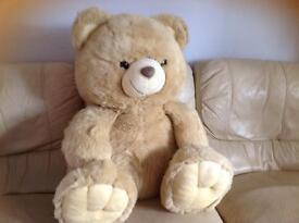 Brown bear, large size.
