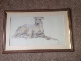 Lurcher watercolour framed painting / frame size (54x34cm)