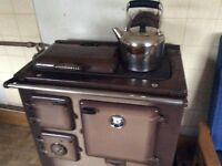 Solid fuel cooker