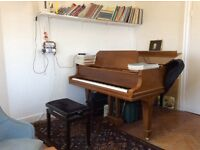 Piano Teacher Lessons Seven sisters Experienced Tutor