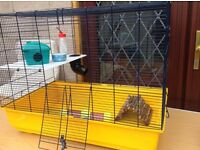 Complete hamster house