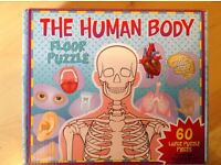 Puzzles human body