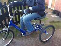 3 Wheel Bike Adult size Trike Special needs