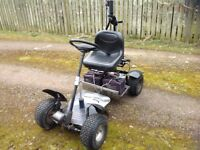 Golf buggy With trailer and charger