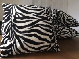 Zebra cushions x 4, brand new