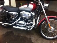 harley davidson xl 1200 custom 2003 with extras