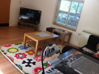 **STUDENTS 2018-2019** SUPER MODERN 2 BED FLAT HOUSE - NEW WALK - £125PPPW