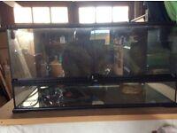"""Reptile aquraium 38""""38""""90 cm"""