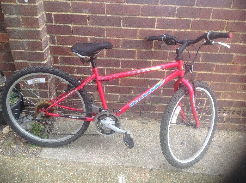 Boy or Girls Skeedaddle 18 Speed Mountain Bike (age know 8-11)