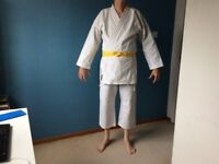 karate suit and accesories, including 6 belts anf three sets of protective pads