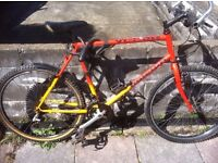 Yukon Raleigh Adult Mens Bike