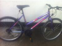 "Universal Blowout Wildthing 18 speed Mountain Bike 26"" wheels"