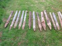 Miscellaneous fence posts / stakes