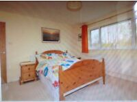Double bed and freestanding mirror (solid pine)
