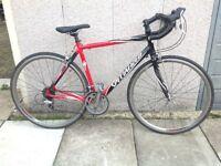 Specialized Allez adult bike
