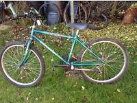 mens small bike