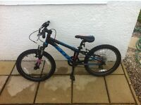 Kids Felt Q20S 2015 Mountain Bike for Sale in Excellent Condition. Cost £270 new - Selling for £70.