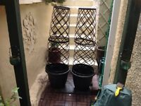 Pair tower pots and trellis