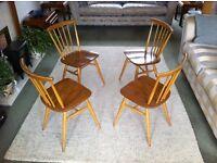 Ercol Original Gold Label Windsor Swept Back Dining ChairModel 737s