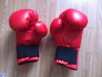 Olympus Boxing Gloves 12 Oz