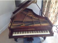 Bechstein grand piano, beautifully rosewood case, super sound and action, 6ft 6in long, made 1900