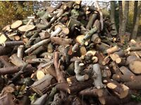 firewood logs fire wood burner devon dorset