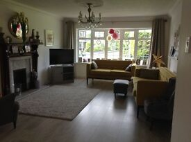 3 Bed Detached House - Upper Malone -Rent for 2 Weeks (1st -15 July ONLY)