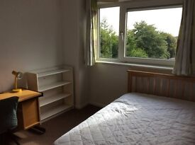 Modern 4 Bedroom flat for rent. 2 minute walk from University and Town Centre