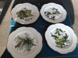 Royal Worcester Display Plates