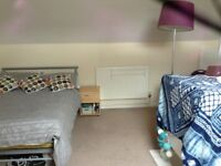 vegan student houseshare in Beeston, Nottingham