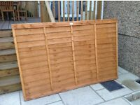 1 New Fence Panel For Sale - £25