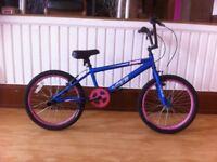 "BMX - refurbished Vibe Zonke: 20"" wheels"