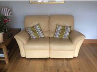 Natuzzi leather sofas