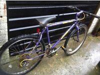 Men's Muddyfox Mountain Bike 21 Speed