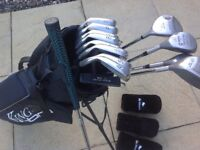 Full set of clubs and carry bag