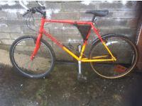 yukon raleigh adult mountain bike